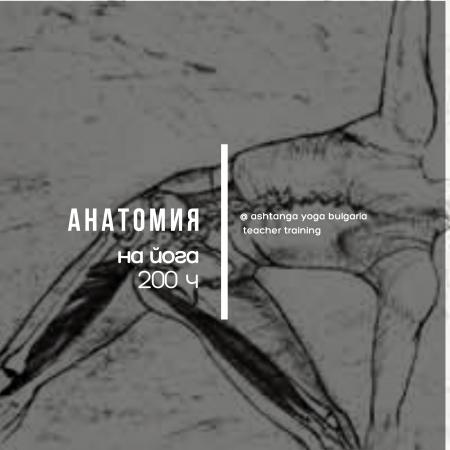 Йога анатомия за учители 200 ч