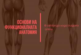 Основи на функционалната анатомия